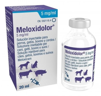 MELOXIDOLOR 5 mg 20 ML