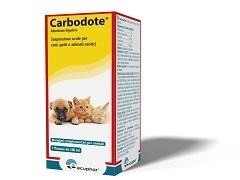 CARBODOTE 100 ML